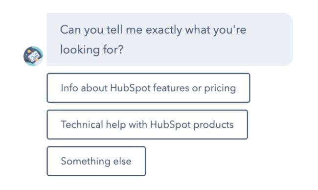 HubSpot embraces the website development trend AI chatbot