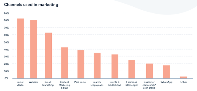 graph of most popular channels used in marketing, with website in position 2 after social media