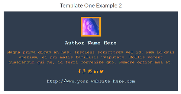customizable wordpress author bio plugin template