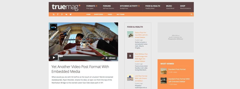 a demo of the WordPress tech blog theme Truemag