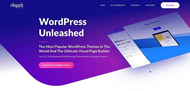 product page for the wordpress theme framework divi
