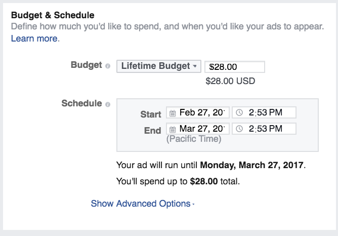 budget and schedule