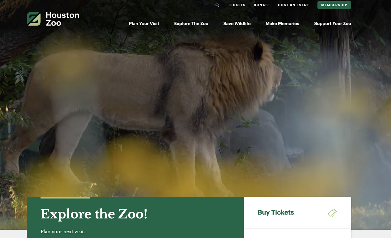 Houston Zoo WordPress website example