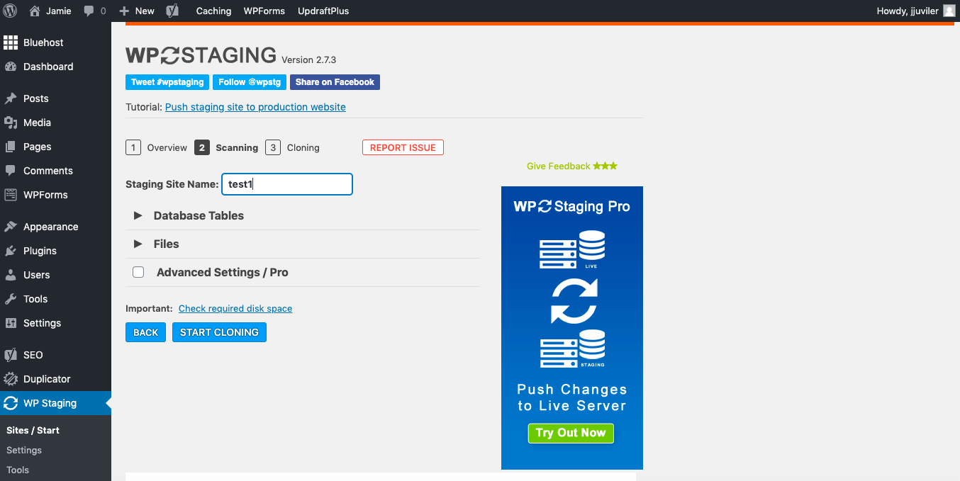Entering staging site name in WP Staging plugin settings