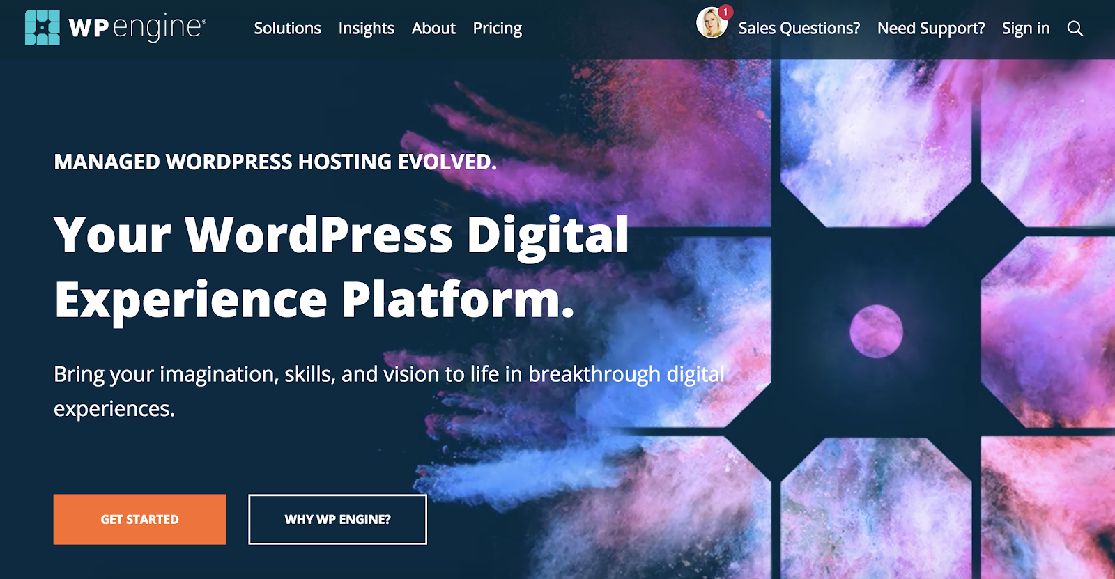WP Engine platform for WordPress website