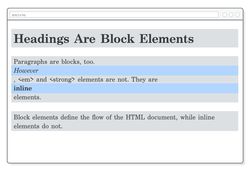 css box model html elements