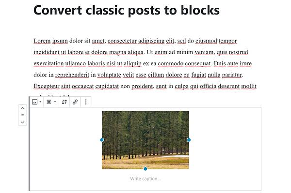 block editor blog post in wordpress