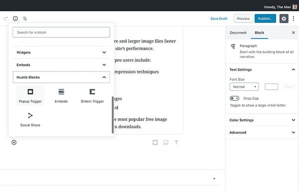 Hustle Pro plugin gutenberg editor