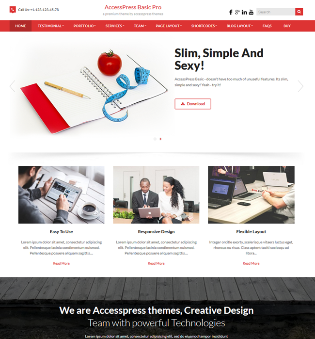 basic pro wordpress business consulting theme