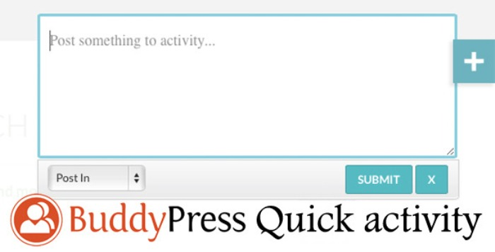 BuddyPress quick activity
