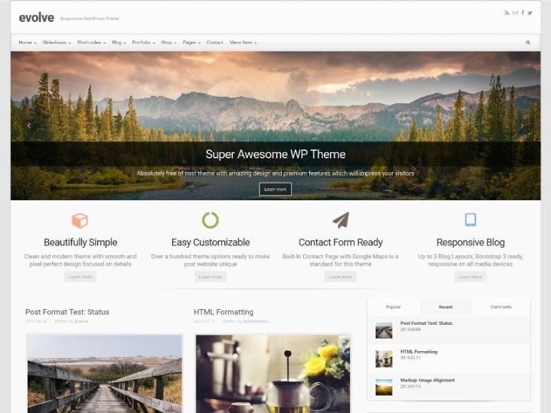 Evolve Bootstrap WordPress Theme