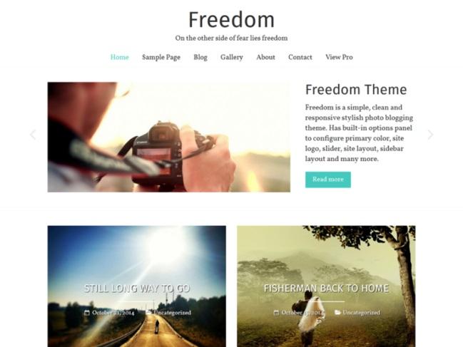 Freedom WordPress theme demo shows minimalist grid