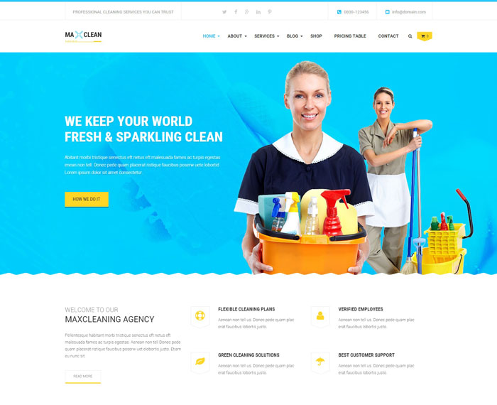 Max Cleaners and Movers, Wp theme
