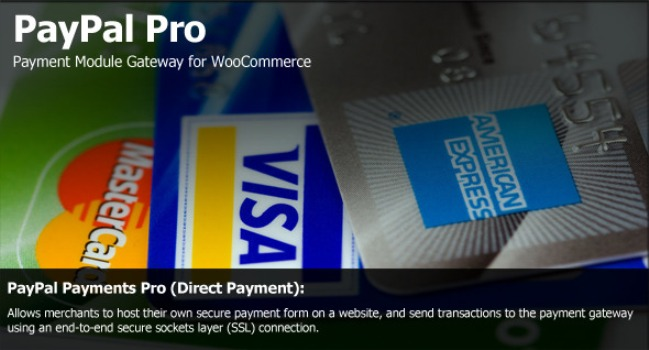 PayPal Pro Payment Module for WooCommerce