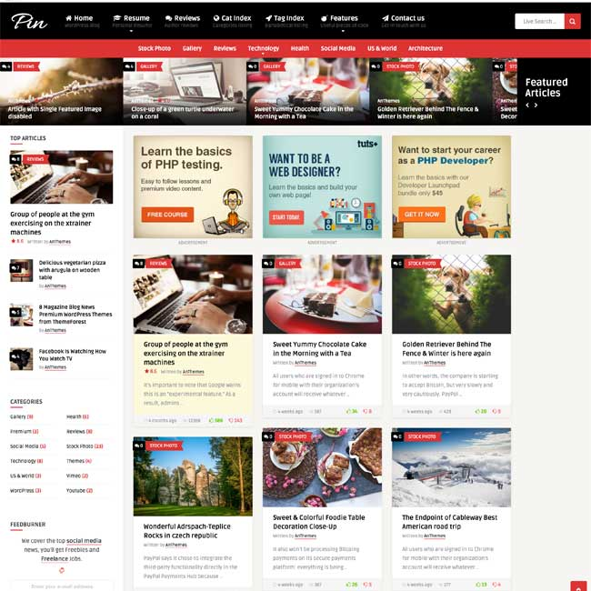 Pin-WordPress-Theme