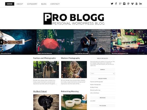 Pro Blogg WordPress Theme