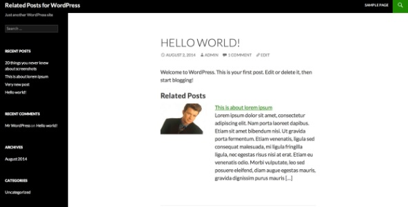 Related Posts for WordPress, related post plugin