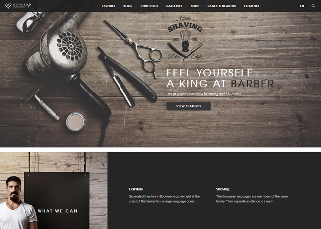 ronnby wordpress theme