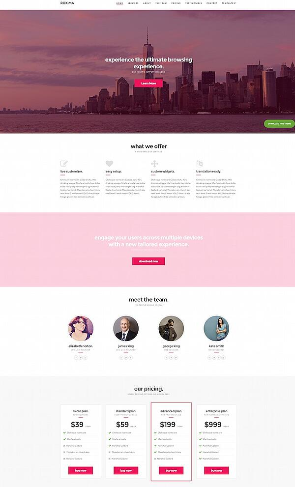 Best parallax wordpress theme Roxima demo