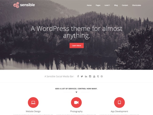 Sensible-wp WordPress theme
