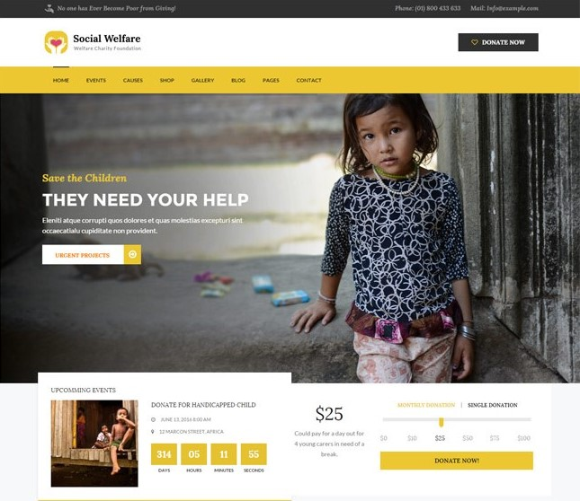 Social Welfare WordPress Theme
