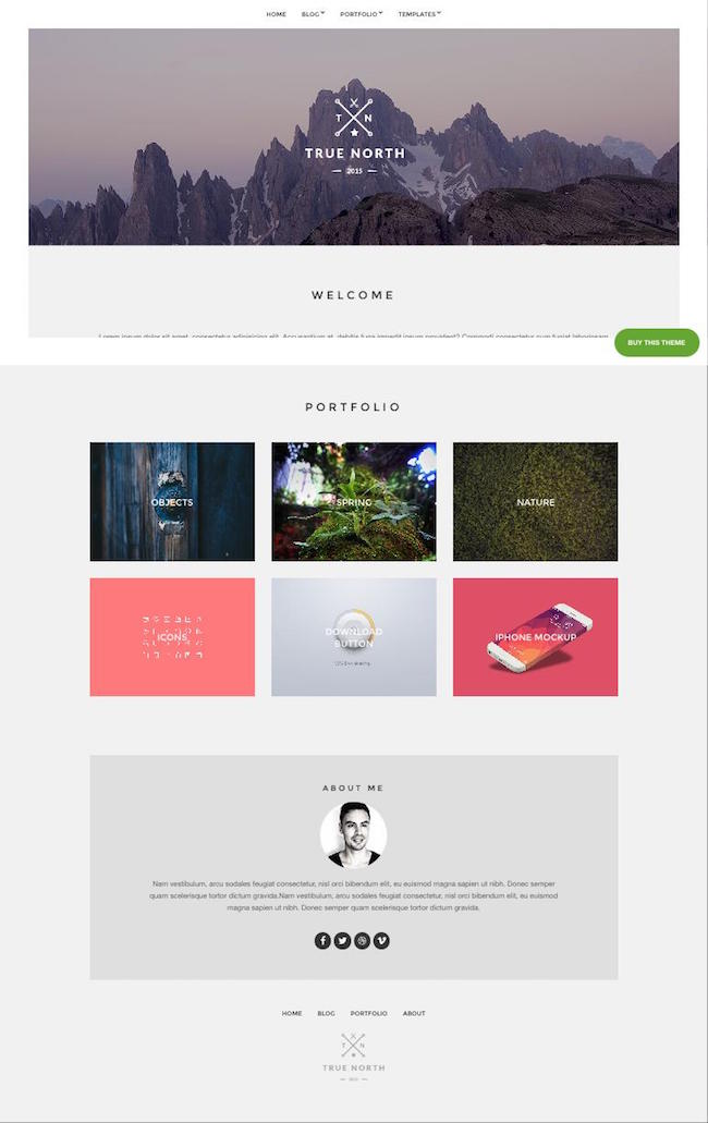 True-North-Free-WordPress-Freelancer-Theme