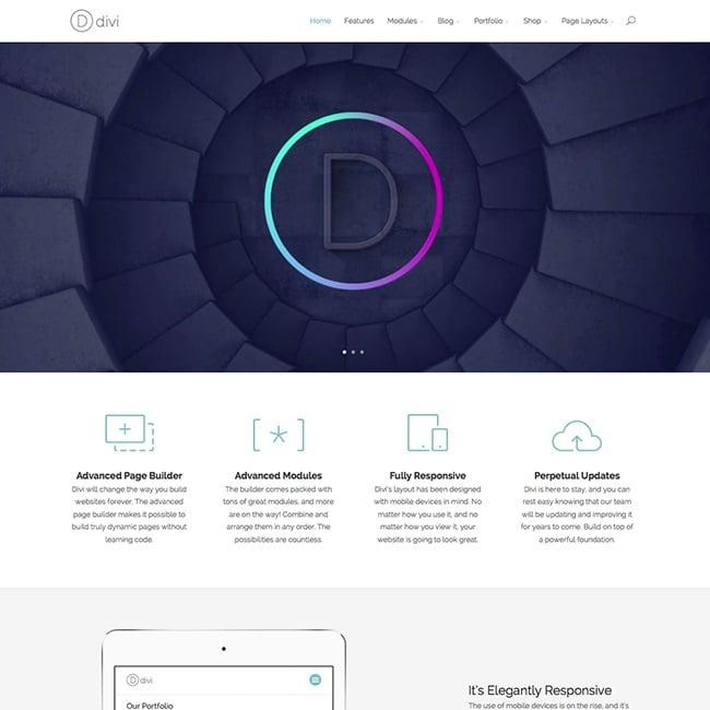 the one page WordPress theme Divi