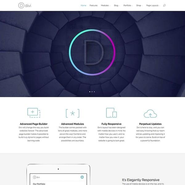 Best parallax wordpress theme Divi demo