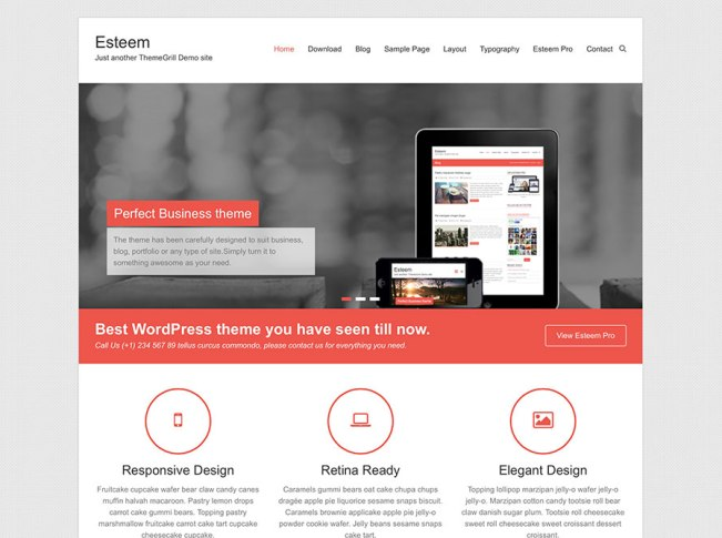 esteem-wordpress-business-theme