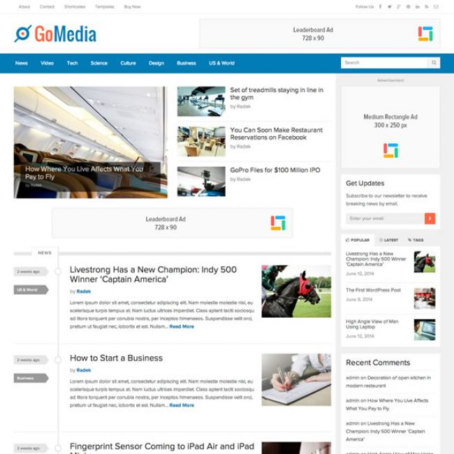 Adsense optimized WordPress themes