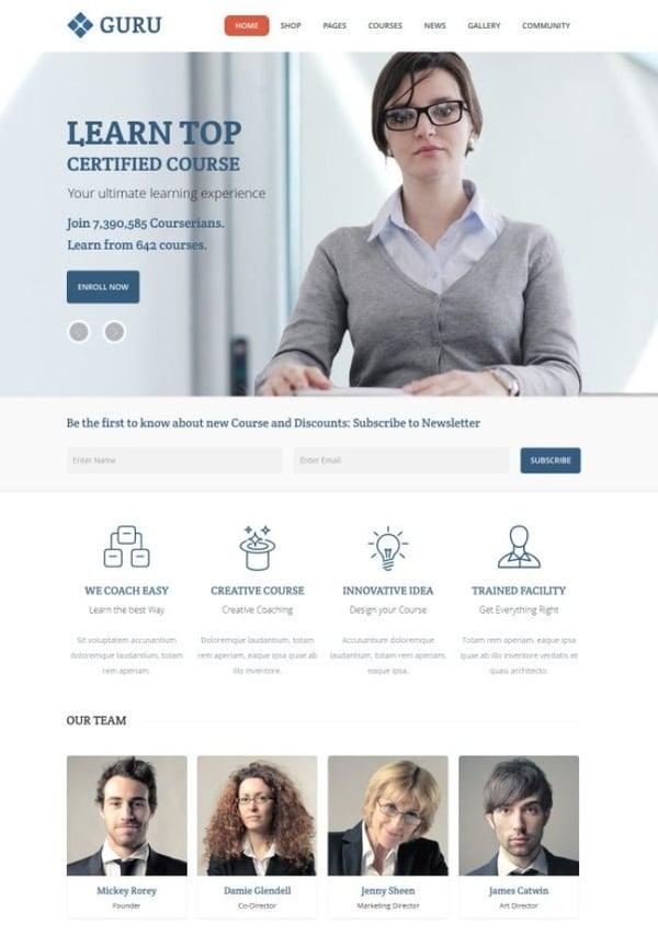 guru WordPress theme