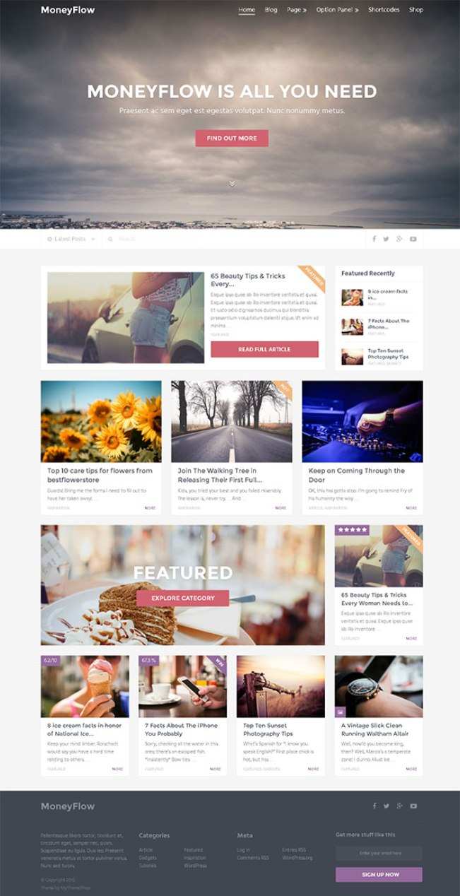 moneyflow-wordpress-theme
