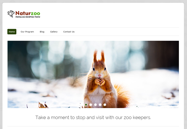 WordPress Theme For Pet Shops