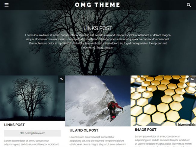 omgtheme-wordpress-theme