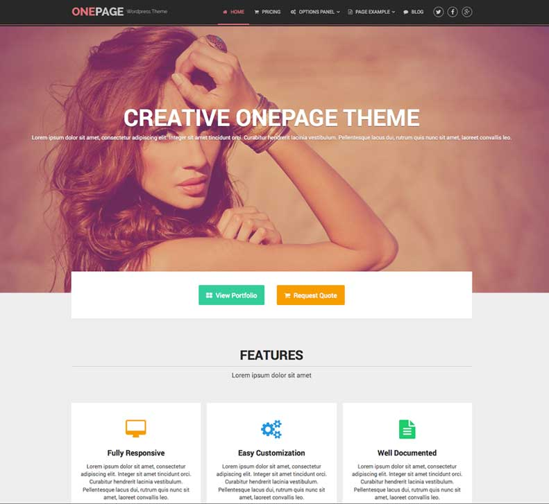 the one page WordPress theme OnePage