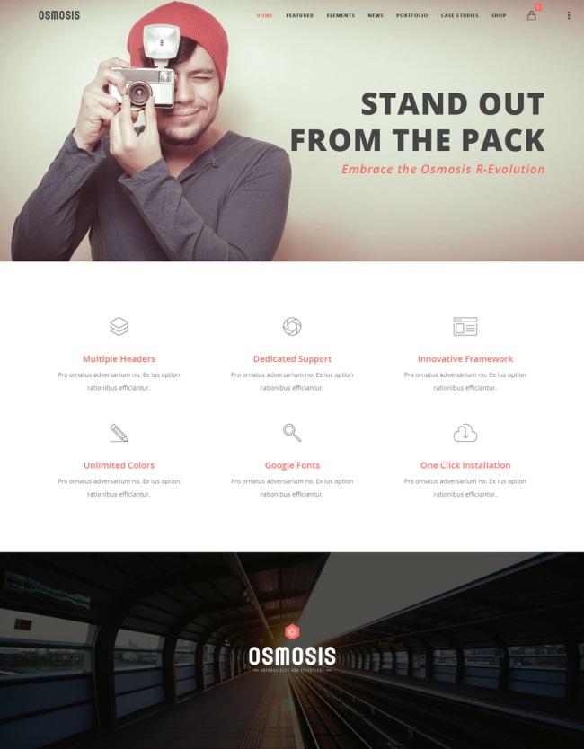 the one page WordPress theme Osmosis
