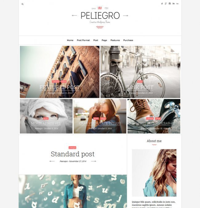 peliegro-clean-personal-wordpress-blog-theme