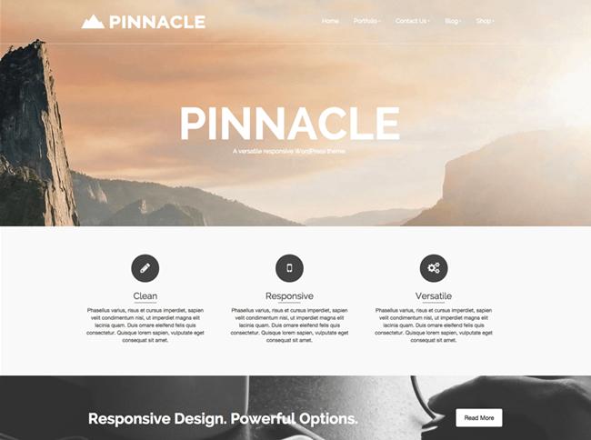 pinnacle free theme