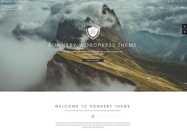 Best Parallax WordPress theme  Ronneby demo