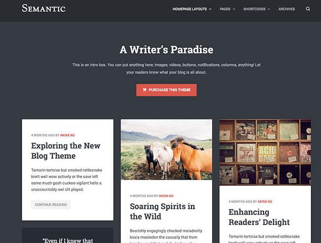 semantic-masonry-wordpress-theme