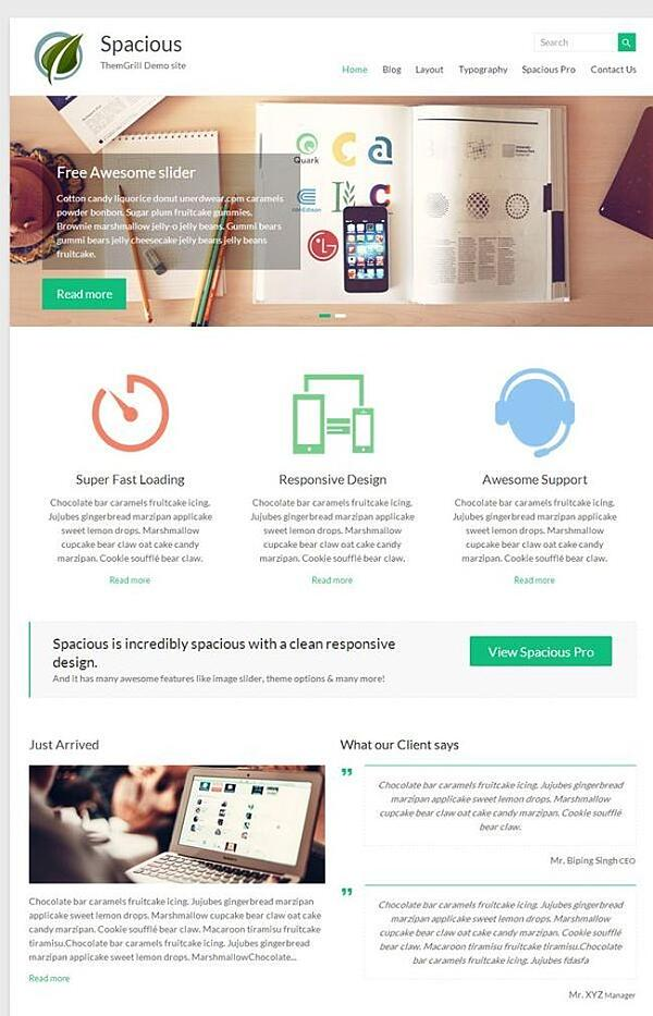 Spacious free minimalist WordPress theme
