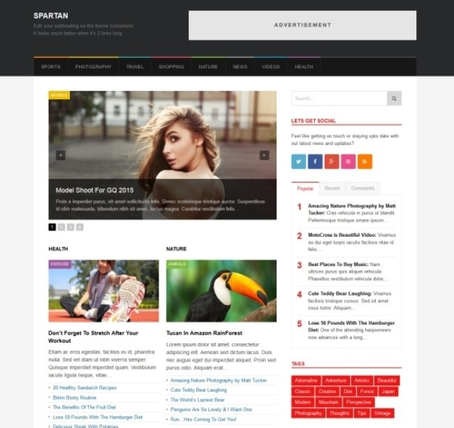 spartan WordPress theme