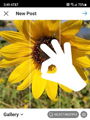 Cropping Photo on Instagram by Pinching