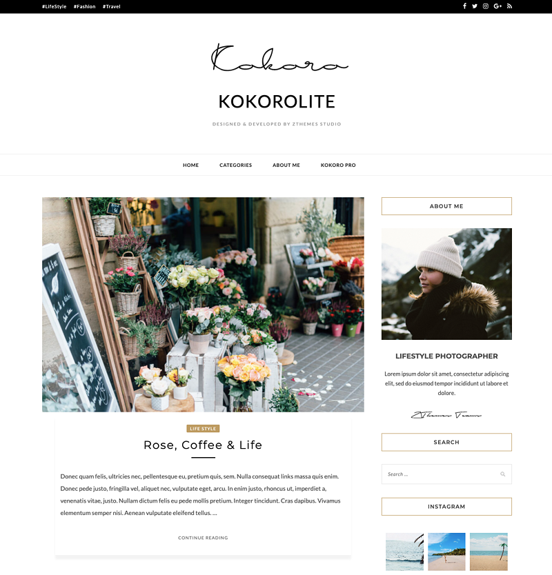 Kokoro Lite minimalistic WordPress theme
