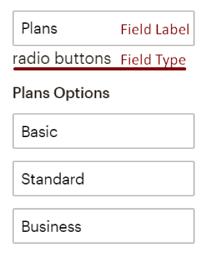 Mailchimp Radio Buttons