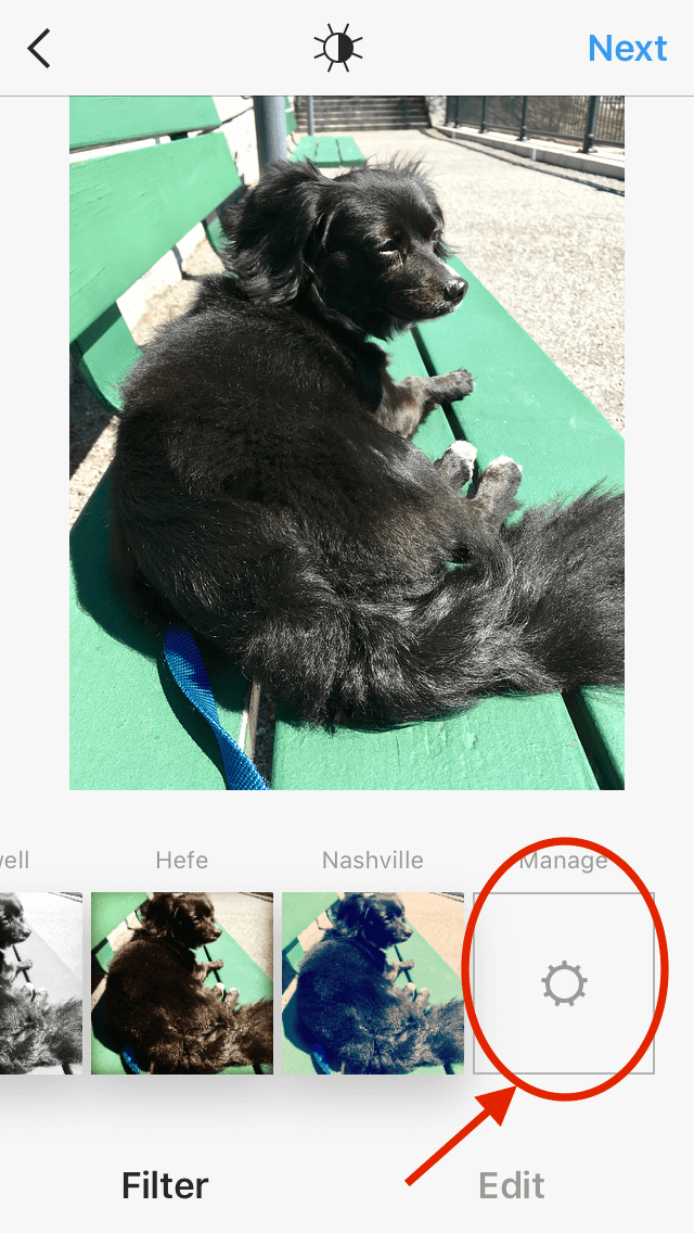 Screen where you can manage Instagram filters