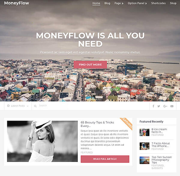 MoneyFlow default demo with grid layout and sidebar