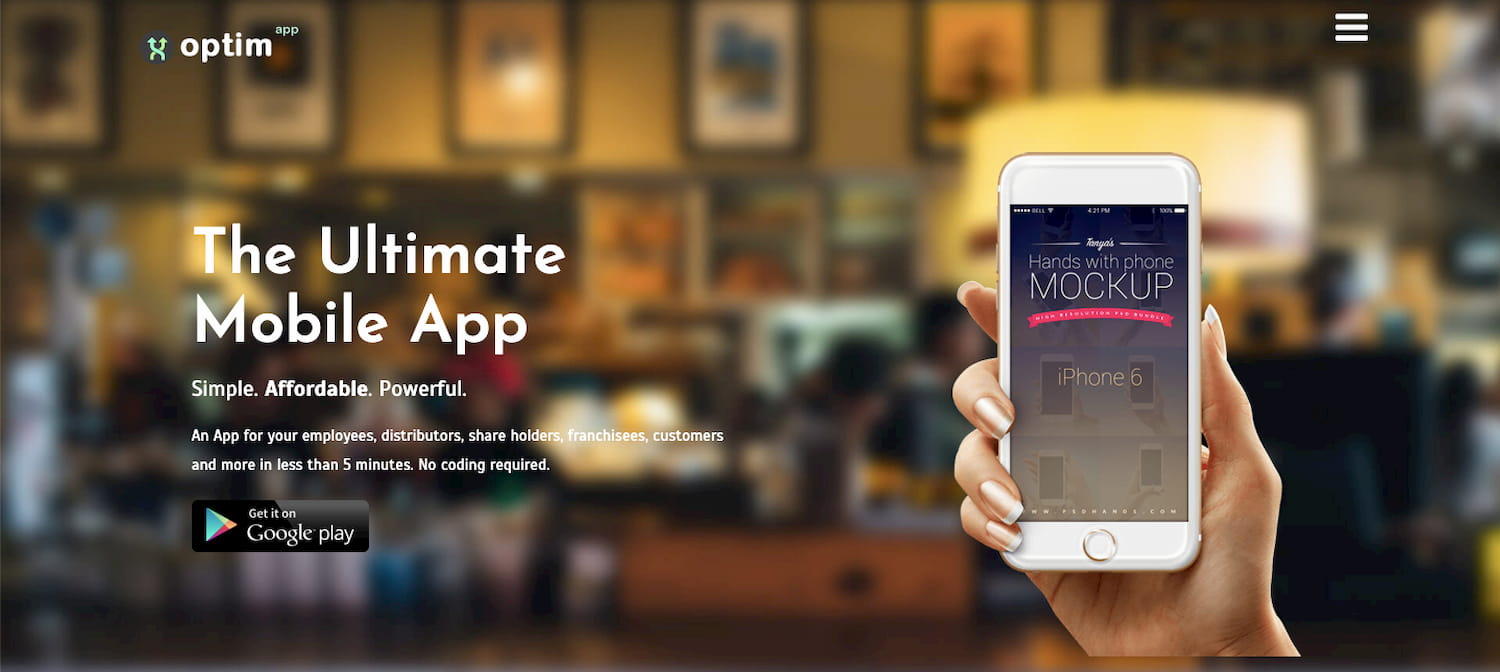 Optimize WordPress theme homepage for tech startup website