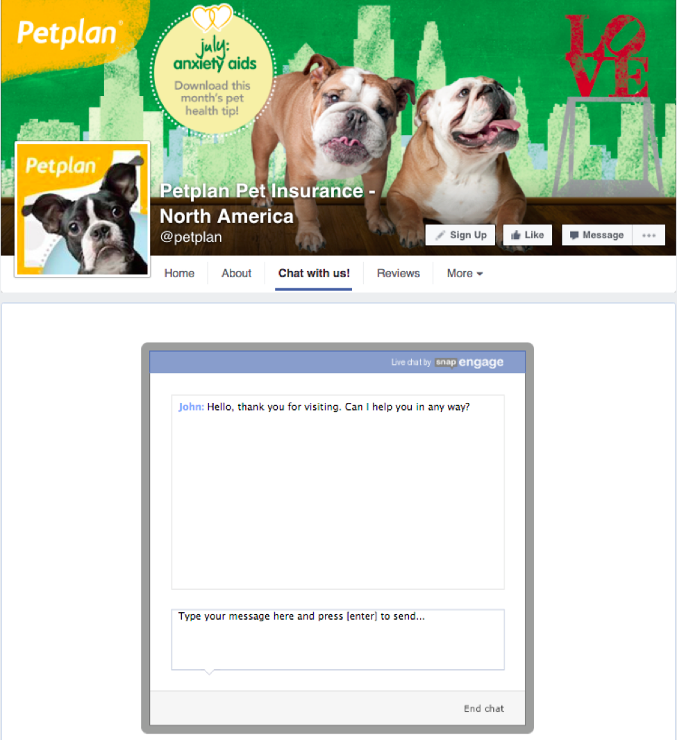 Facebook live chat window on bottom center of Petplan website