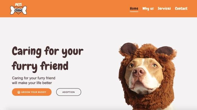 Pets demo of fast WordPress theme Mesmerize Pro